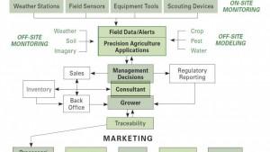 Agriculture Production Flow Diagram