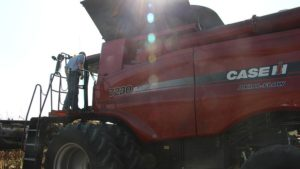 Farm manager Nate Long takes his seat behind the wheel of this Case IH 7230 combine.