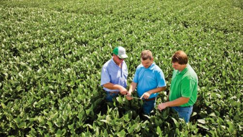 Ag Retailer and Grower WinField United