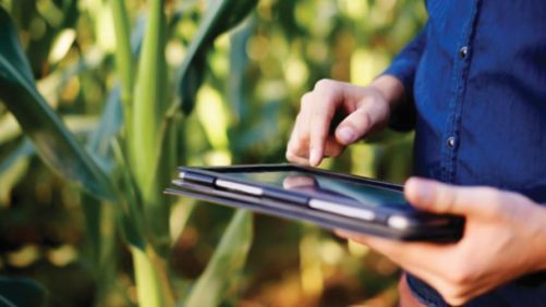 Agronomist with iPad