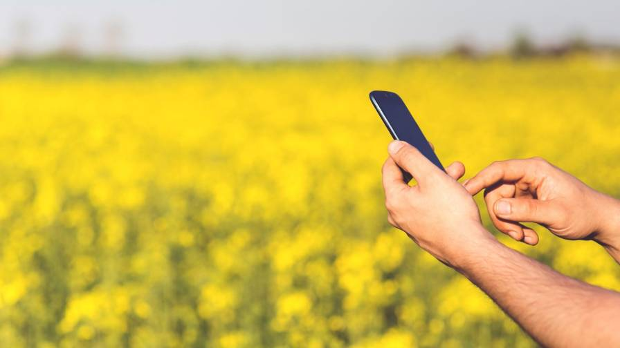 Mobile Phone in field