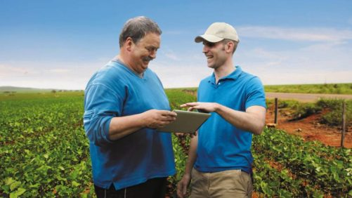 BASF Maglis grower retailer tablet