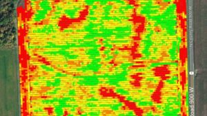 Yield Data Image