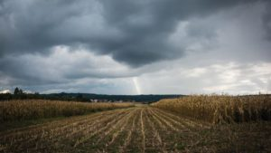 Harvested-Corn-Field-Clouds