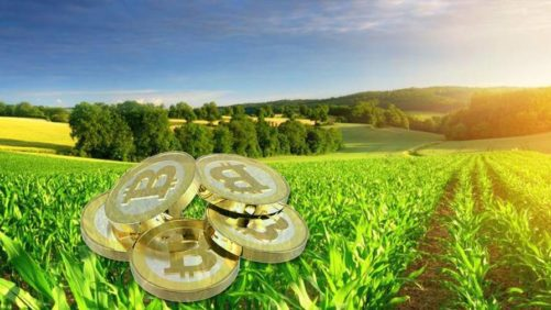 Bitcoin-for-Agriculture-Source-TheJavaCoincom