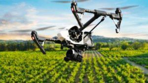 Cannabis-Drone-Photo-sUASnews