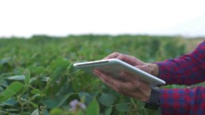 Farmer-tablet