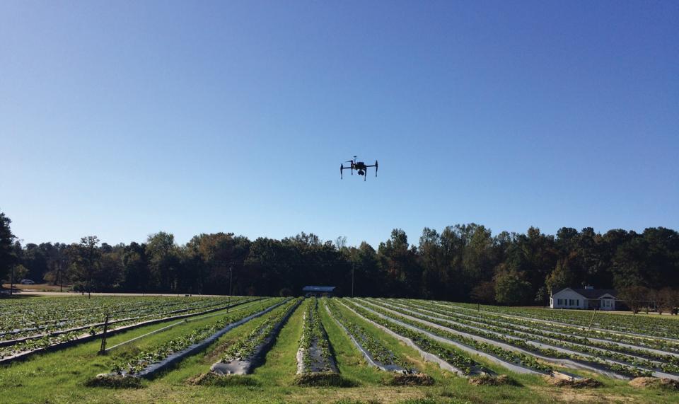 PrecisionHawk-drone-flies-over-strawberry-field
