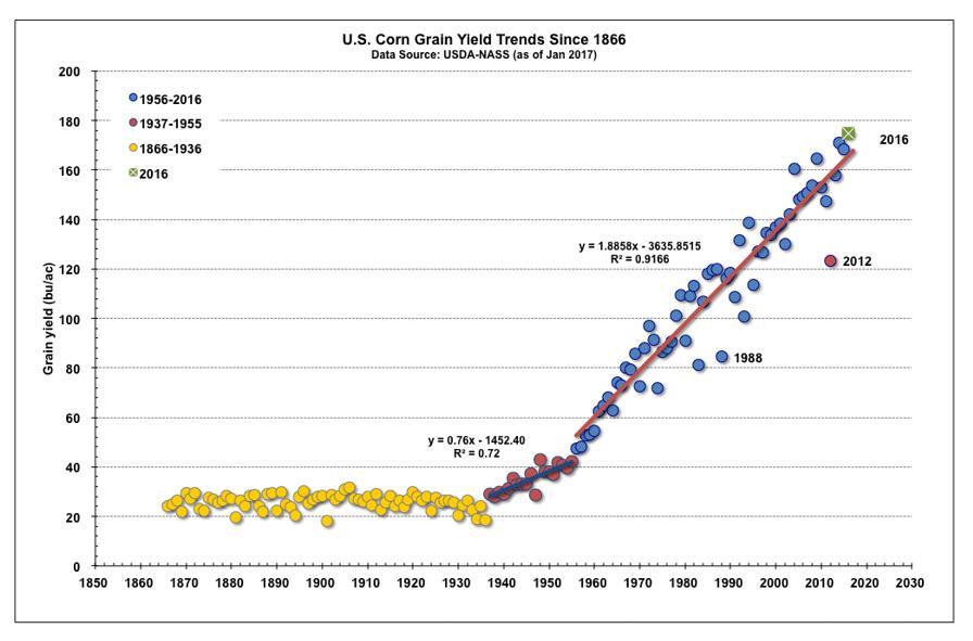 Corn-Grain-Trends
